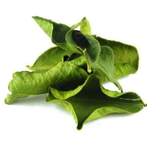 Citroenblad - kaffir lime leaves - Thaise kruiden